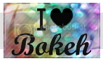 photo i_heart_bohkeh_big_stamp_by_insidious_rose-d351gwa_zps3ee152a3.png